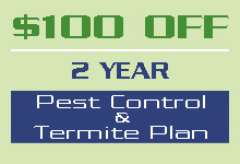 Promotions Pest Control Prices