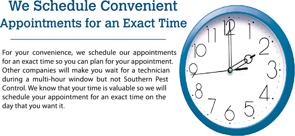Appointments scheduled on the hour